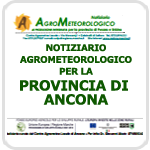 ASSAM - Supplementi - Speciali - Ancona