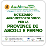 ASSAM - Supplementi - Speciali - Ascoli P. e Fermo